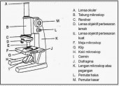 3_mikroskop.jpg